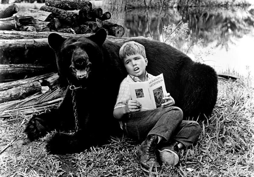 Un garçon est assis dans l'herbe en lisant un livre tout en s'appuyant contre un ours