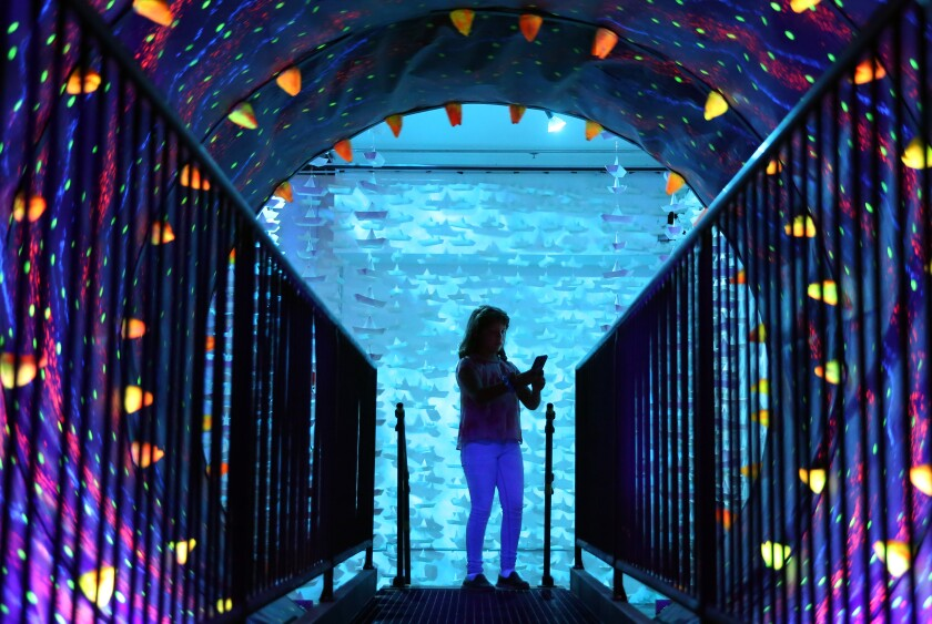 """Bettina Diaz, 10, takes a picture inside a tunnel at the """"I Like Scary Movies"""" art exhibit downtown."""