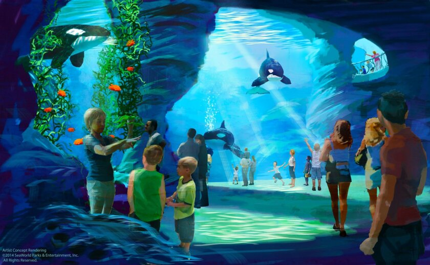 """SeaWorld officials say the planned killer whale tank expansion will provide """"goose bump"""" moments for visitors as they descend to the lower depths, as shown in this rendering."""