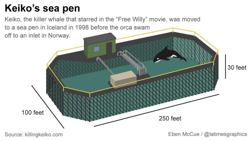 An orca enclosure