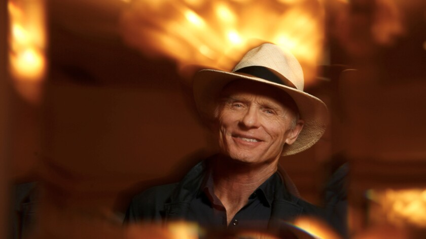"Actor Ed Harris stars in HBO's new series, ""Westworld""."