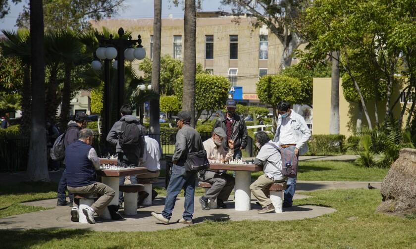 Hombres juegan ajedrez en las mesas del Parque Teniente Guerrero.