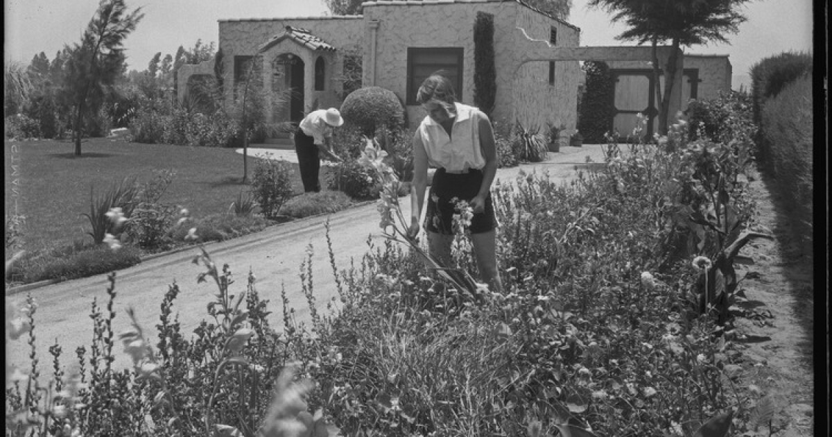 More than a big, flat suburb: Why the San Fernando Valley is so important to California history