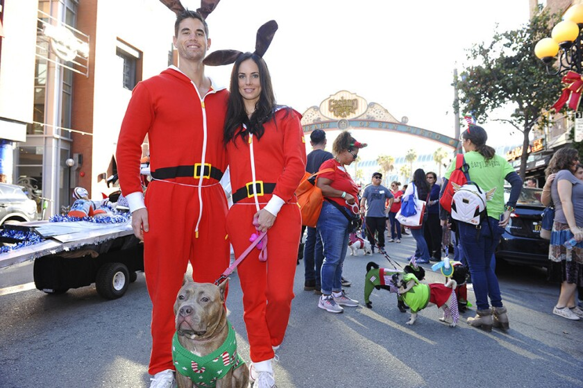 A flurry of furry and four-legged friends marched the streets of the Gaslamp in their holiday finest during the Gaslamp Holiday Pet Parade.