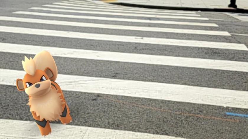 "Playing ""Pokemon Go"" as a pedestrian can be hazardous, too."
