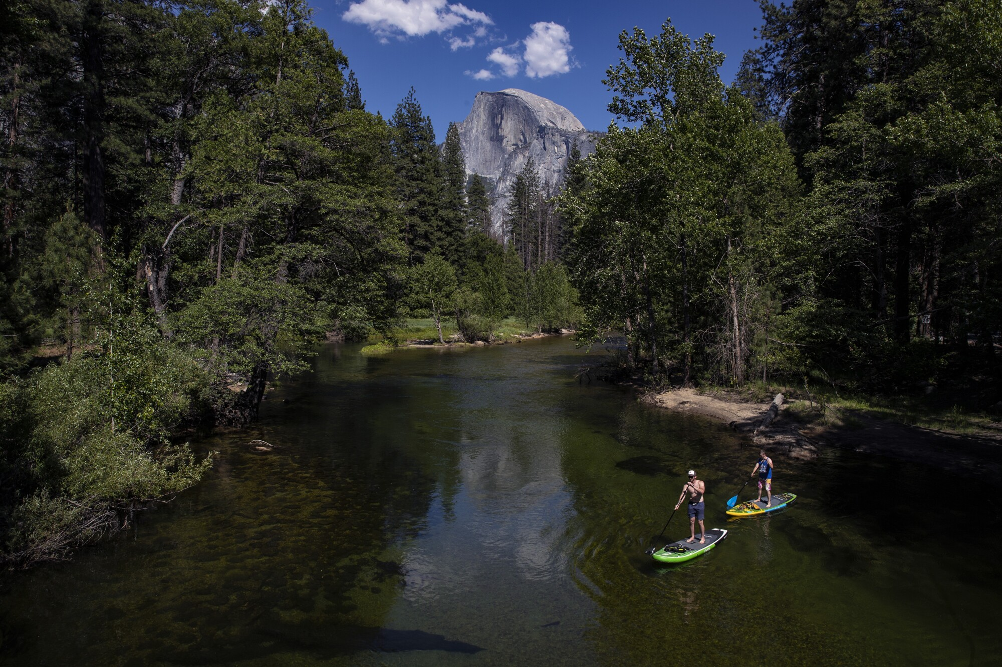 Paddleboarders on the Merced River in Yosemite Valley.