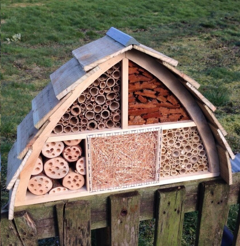 This insect house is made of tubes so solitary bees can lay their eggs.
