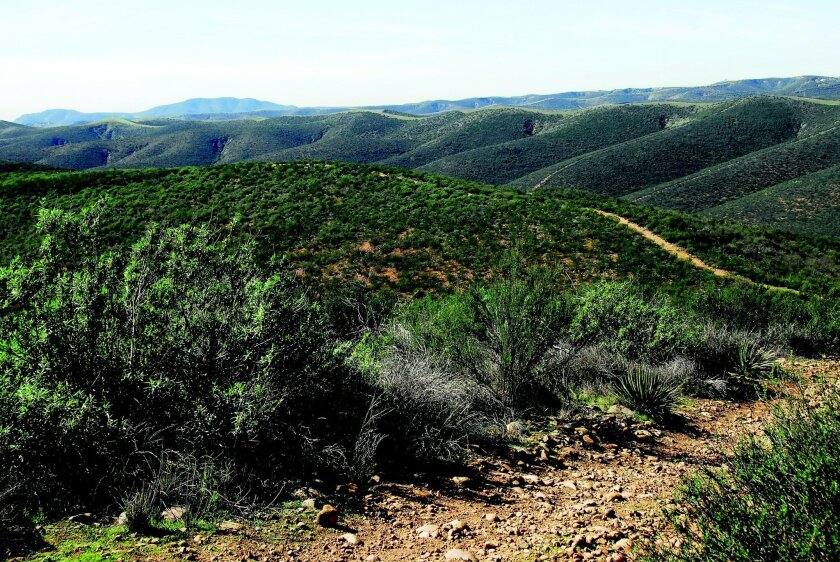 The Ridge Trail really earns its name in the Sycamore Canyon Preserve. CREDIT: Priscilla Lister