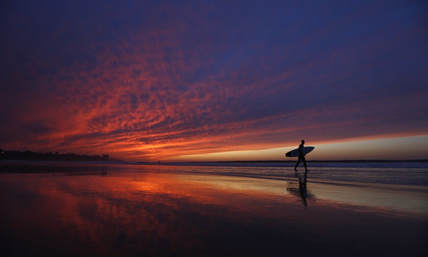 A surfer walks out of the water at La Jolla Shores.