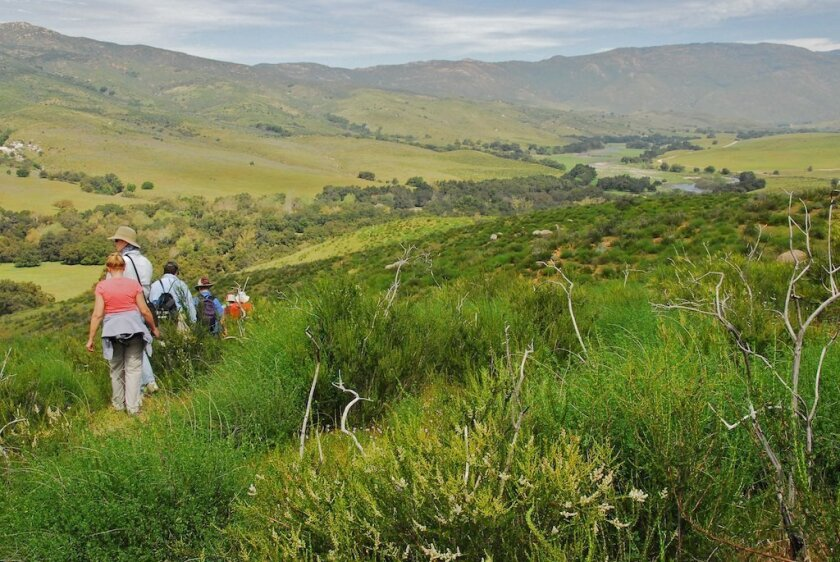 Members of the San Dieguito River Valley Conservancy hike through Pamo Valley.
