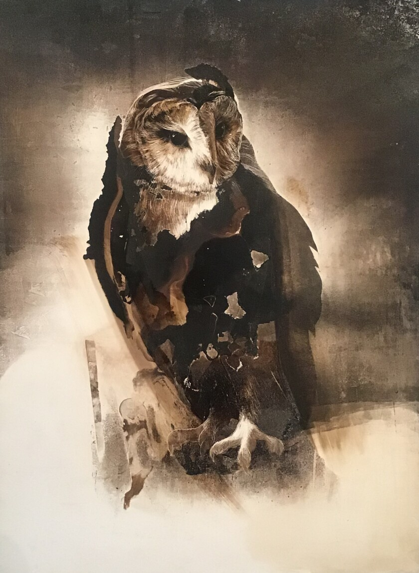 """""""Owl 2"""" by James Griffith, 2019. Tar on panel, 24 inches by 18"""