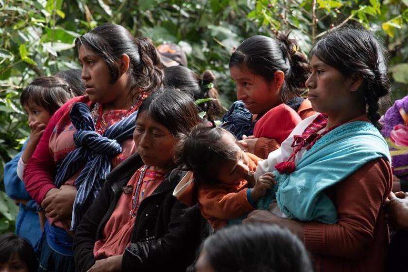 Indígenas desplazados, el pasado 15 de enero de 2019 en los altos del estado de Chiapas (México). Luego de tres de meses de vivir en chozas improvisadas fabricadas con madera, plástico y lámina que fueron destruidas por autoridades locales, más 2.000 desplazados quedaron a su suerte en el municipio de Chalchihuitán, en el suroriental estado mexicano de Chiapas. EFE
