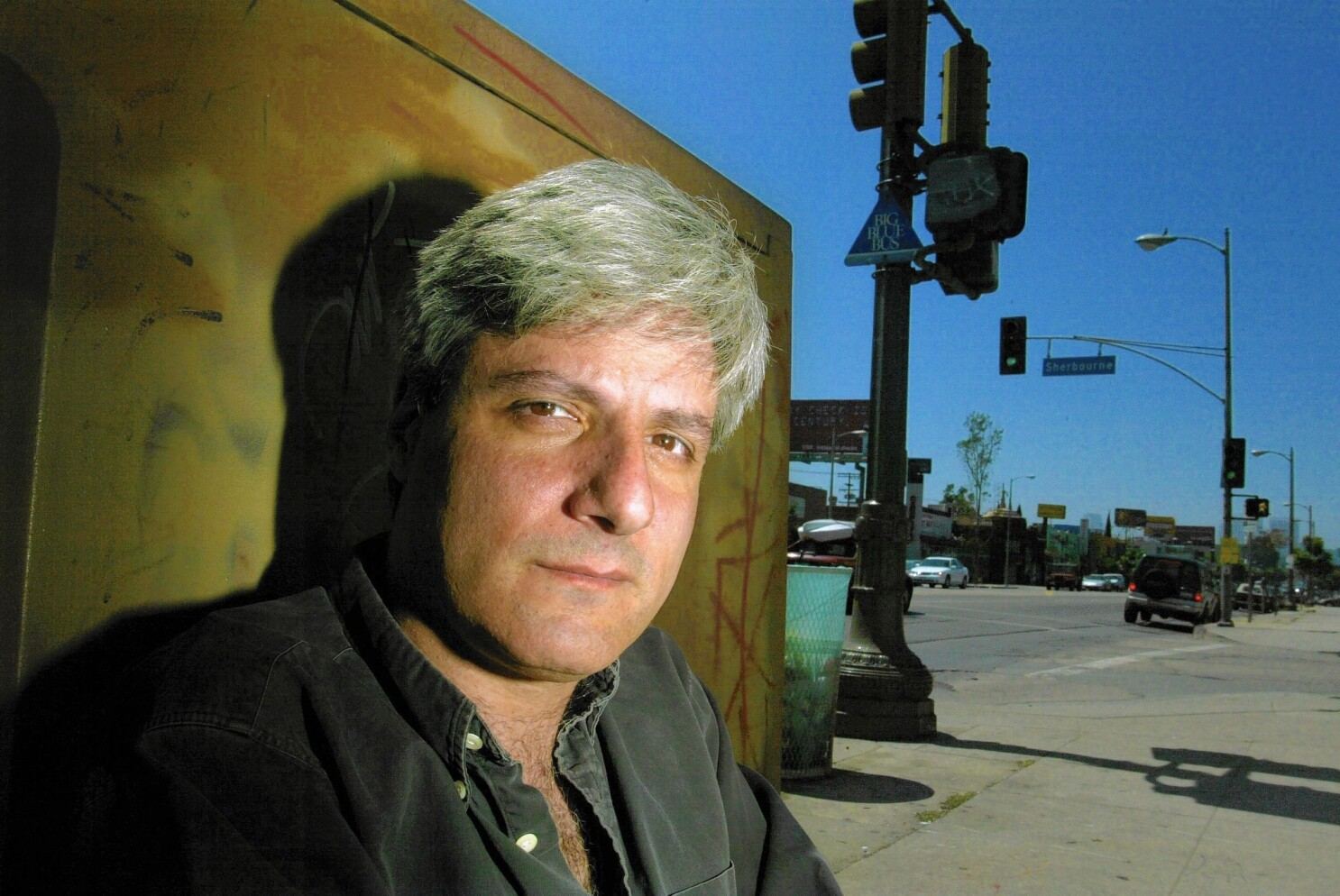 Review: 'Sidewalking' author puts L.A.'s best foot forward in ...