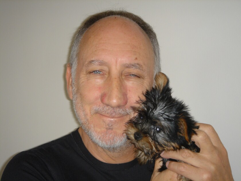 Pete Townshend holds a miniature Yorkie named Wistle up to his face.