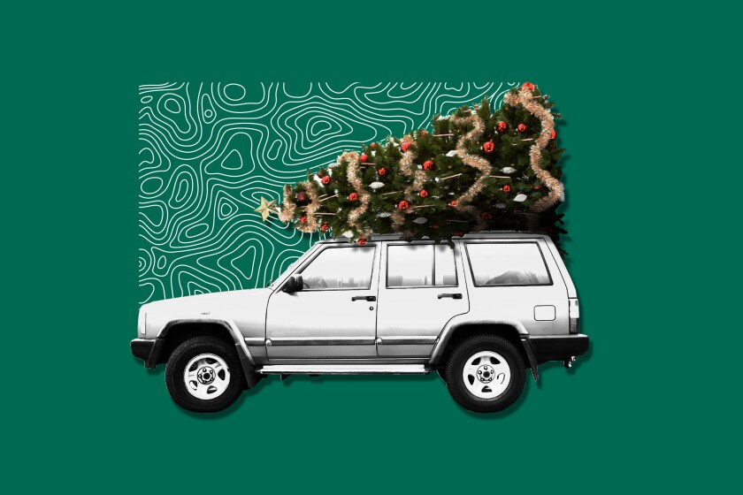 Illustration of car with Christmas tree strapped to the top of it