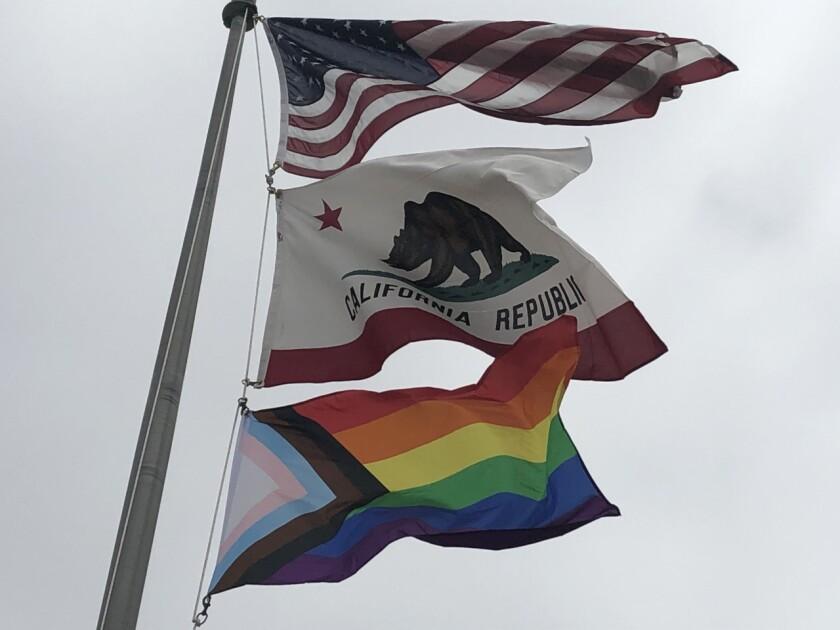 The Progress Pride Flag (bottom_