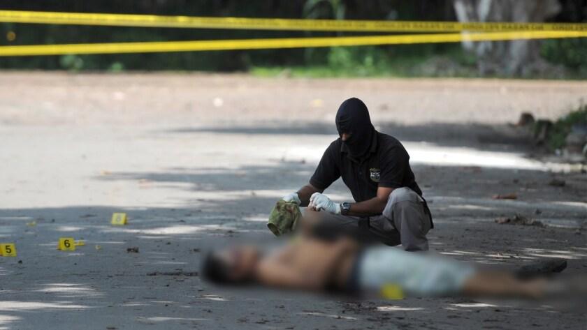Los asesinatos en El Salvador disminuyeron cerca de un 17 % hasta el 12 de octubre pasado, respecto a la misma fecha de 2015, el año más violento en la historia reciente del país, revelaron hoy fuentes oficiales.