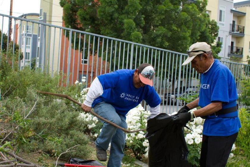 Dos jornaleros trabajan en un jardin en Los Ángeles, California. EFE/Archivo