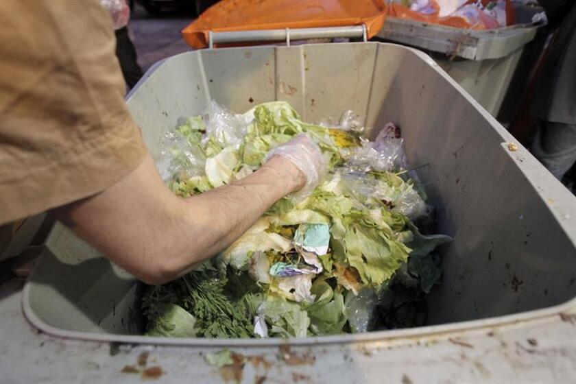"""Los mexicanos desperdician 20,4 millones de toneladas de alimentos al año, desveló hoy el informe """"Pérdidas y desperdicios de alimentos en México"""", realizado por el Banco Mundial, que analiza los impactos ambientales que genera la producción de diversos alimentos representativos del país. EFE/ARCHIVO"""
