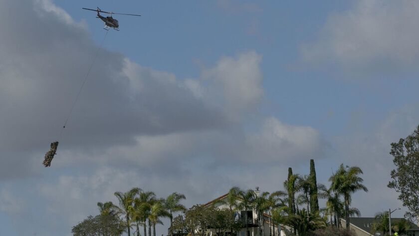 Helicopter crews are doing a major thinning of non-native palm trees in the San Diego neighborhood of Tierrasanta.