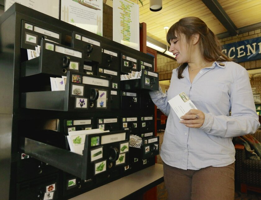 In this Dec. 18, 2014 photo, Betsy Goodman looks over seed packets at the Benson public library in Omaha, Neb. Goodman established a seed library at the library branch in 2012, and patrons checked out nearly 5,000 packets this year. Seed exchanges have sprouted up in about 300 locations around the