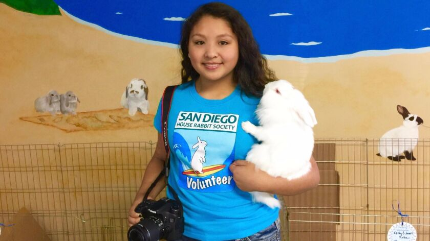 Melanie Limas An, 15, of Carmel Valley, is the in-house videographer for the San Diego House Rabbit Society, a job she has done well enough to earn the organization's 2016 Volunteer of the Year.