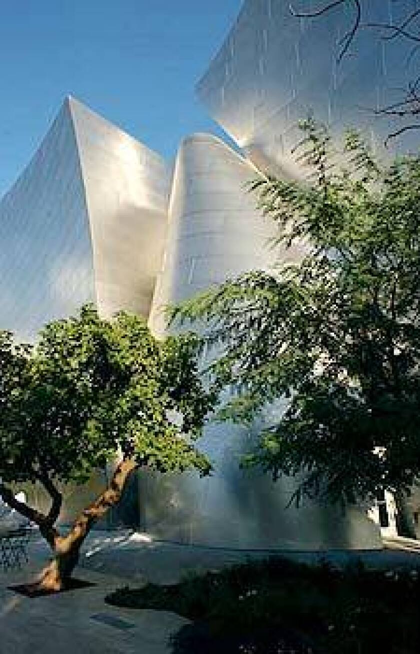 The soft foliage of mature trees contrasts with the Walt Disney Concert Hall's sleek, steel exterior.