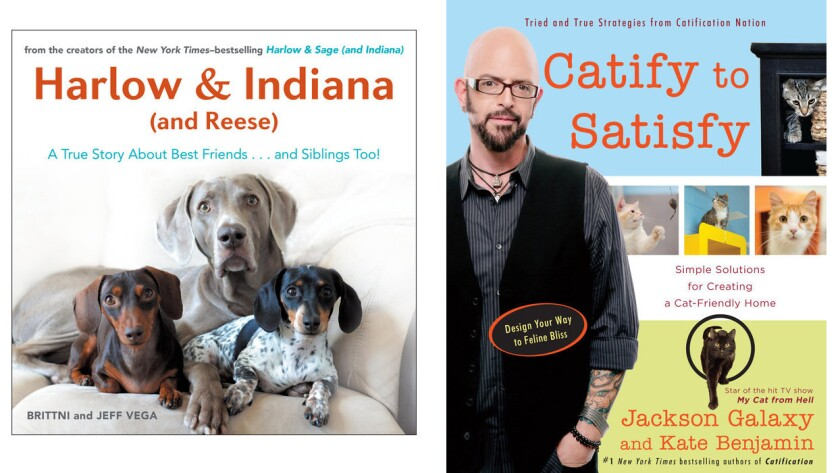 """""""Harlow & Indiana (and Reese)"""" and """"Catify to Satisfy"""""""