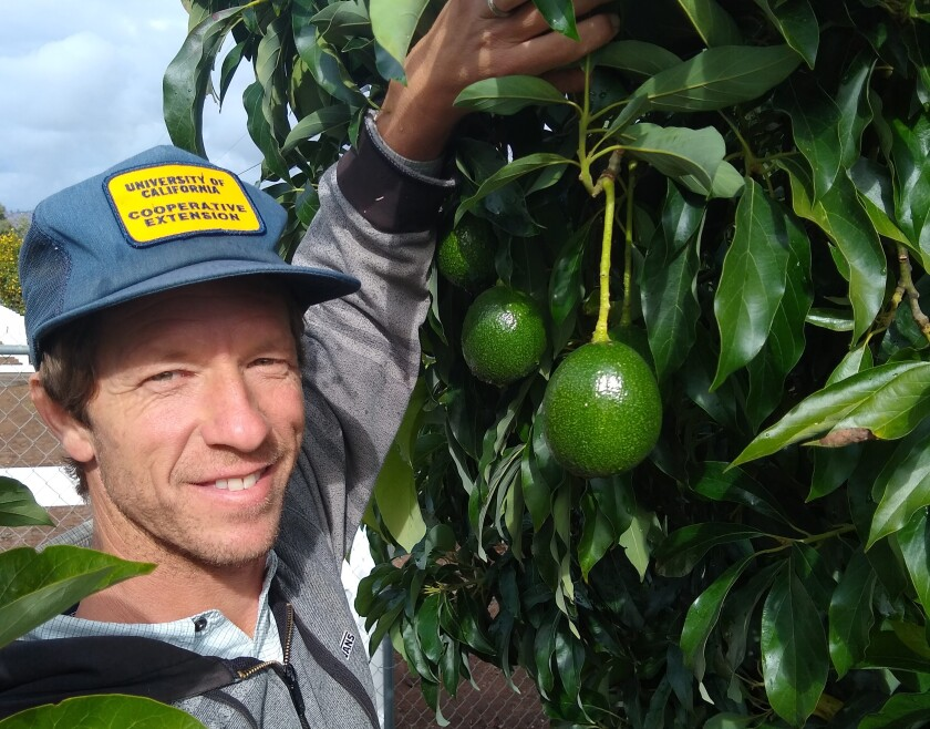 MG Greg Alder with Reed Avocado.jpg