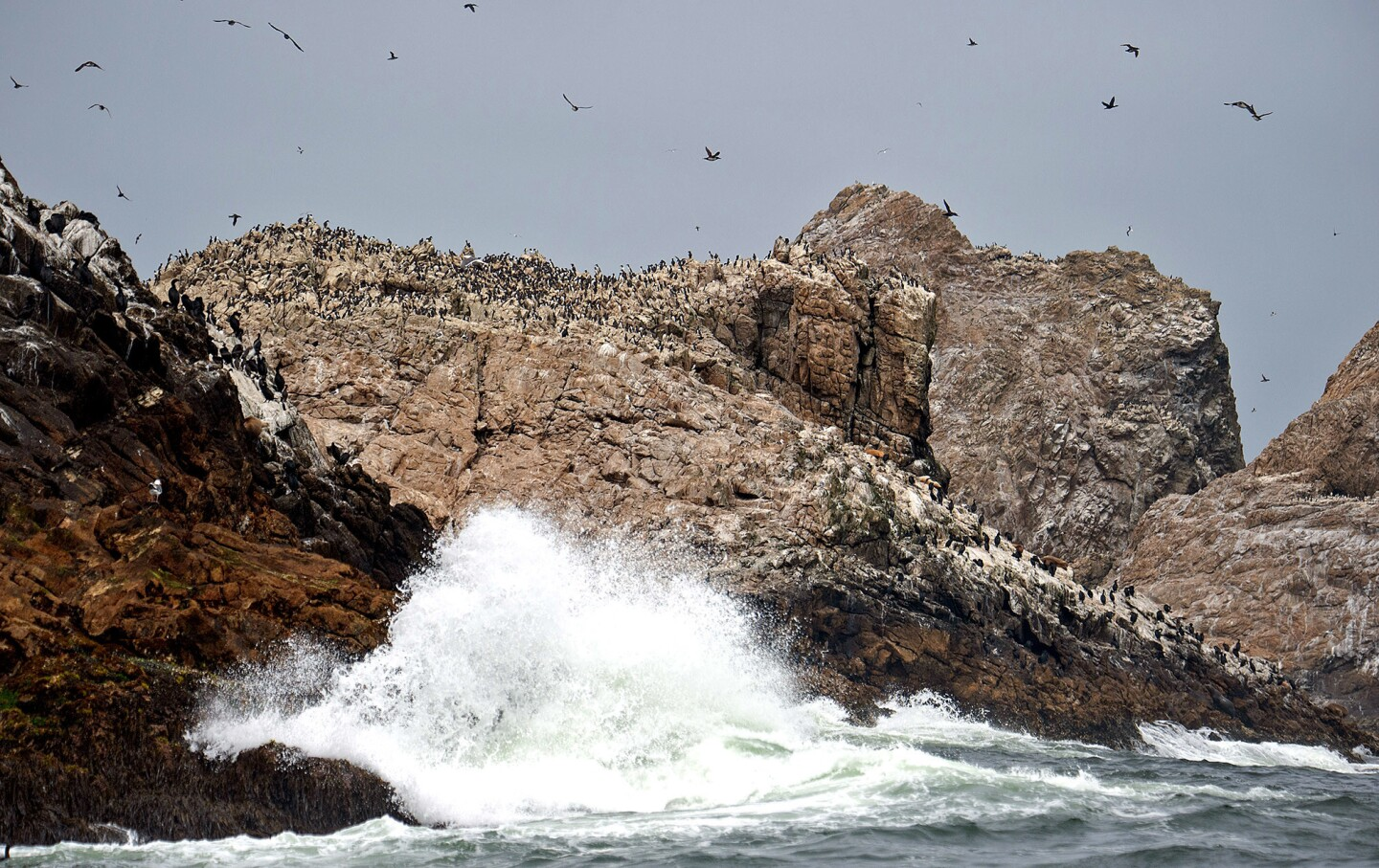 Waves crash ashore on one of the Farallon Islands about 30 miles off the coast of San Francisco.