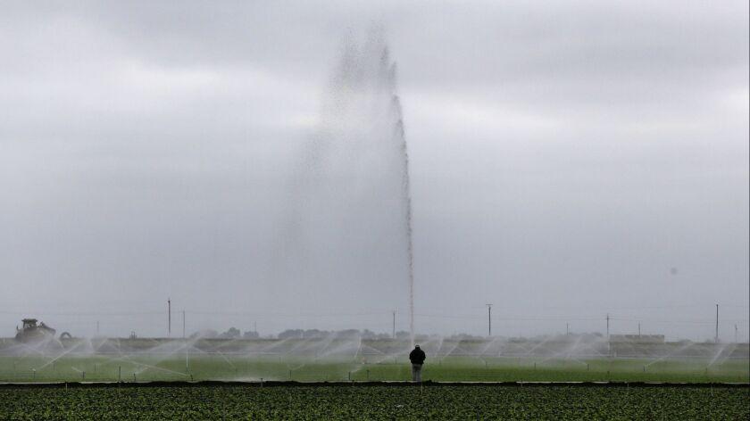 Sprinklers water a field outside Salinas, Calif. on July 27, 2015.