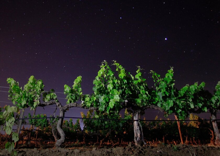 The stars shine brightly over Valle de Guadalupe's wine country, about 12 miles from Ensenada.
