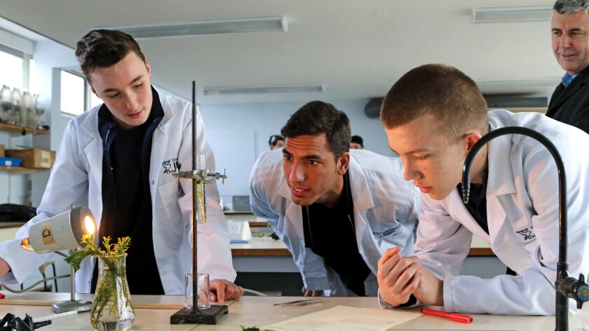 Everton's Joel Robles, center, watches students at the Everton Free School work on a science project.