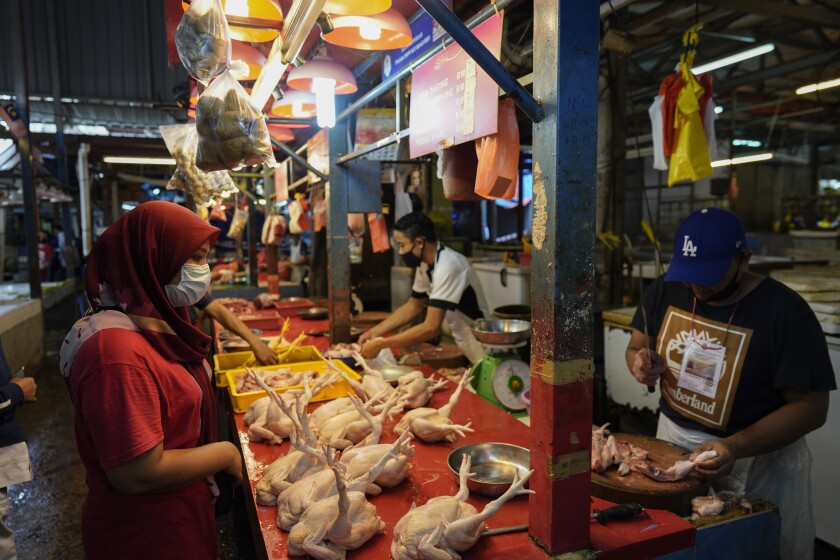 A woman wearing a face mask to help curb the spread of the coronavirus shops at a poultry stall in a wet market