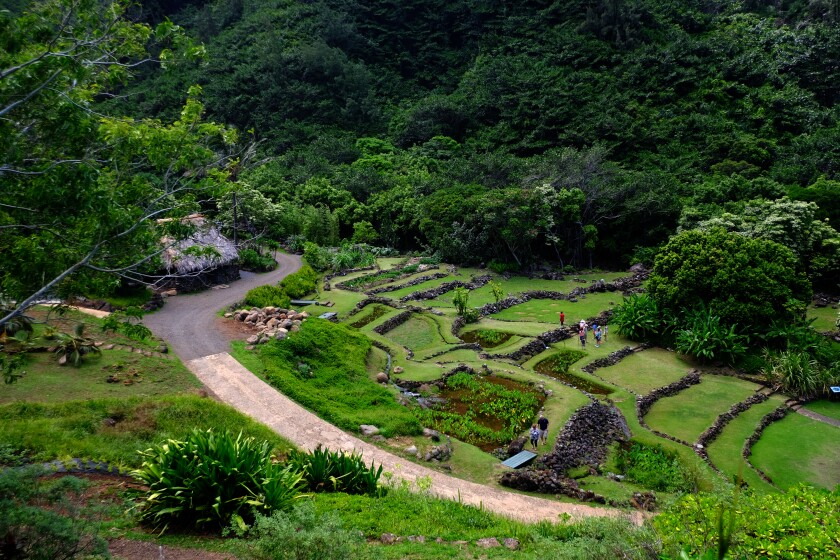 Taro terraces at the Limahuli Garden & Preserve in Hanalei, Hawaii