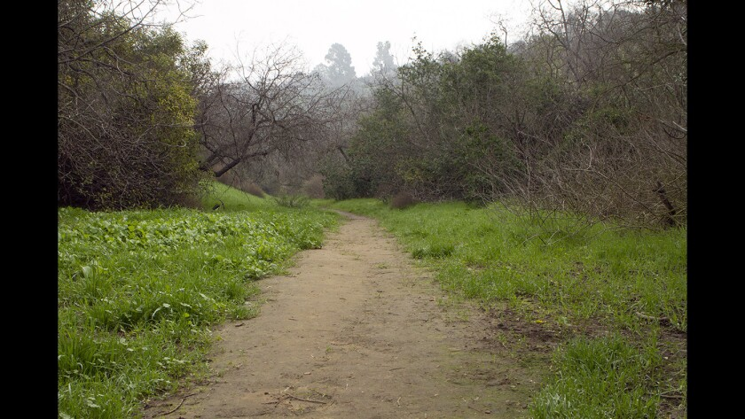 Elyria Canyon Park