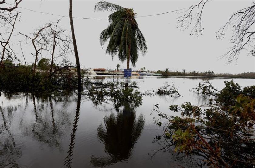 La alcaldesa del municipio puertorriqueño de Morovis, Carmen Maldonado, informó hoy que en las próximas semanas estará listo el puente provisional sobre el Río Grande en el Barrio San Lorenzo, destruido por el paso del huracán María en septiembre pasado. EFE/Archivo