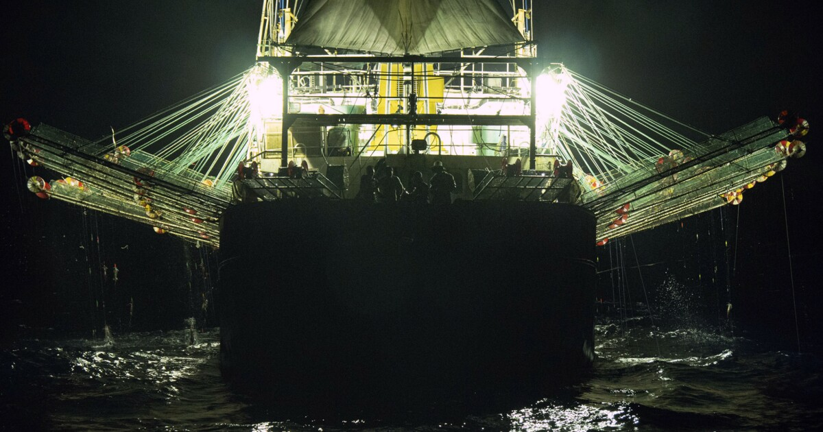 www.sandiegouniontribune.com: Great Wall of Lights: China's sea power on Darwin's doorstep