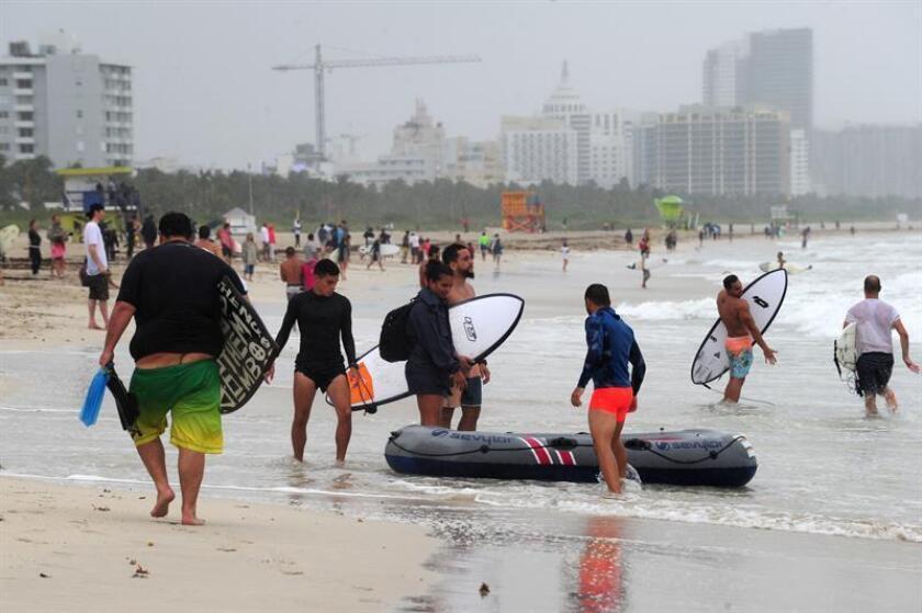 Cerca de 3.900 personas sufrieron picaduras de medusas en los últimos 15 días en las playas del condado de Volusia, en la costa noreste de Florida, con 469 casos solo este fin de semana, informó hoy un medio local. EFE/Archivo