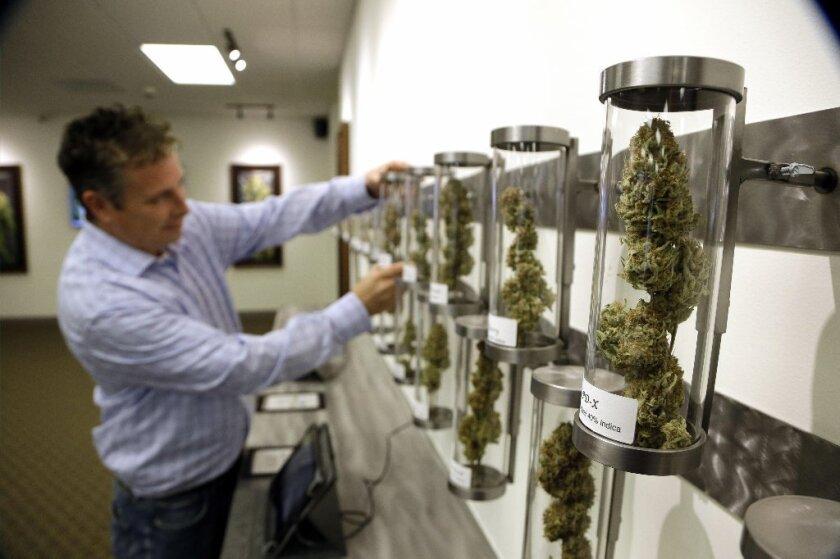 De aprobarse la medida, la marihuana sería legal para los adultos arriba de los de 21 años de edad, los cuales podrían poseerla, procesarla, compartirla y hasta tranportarla.
