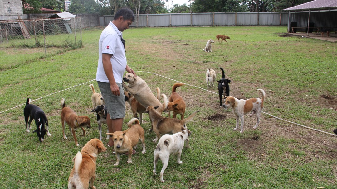 Frank Manus, who manages an Indonesian animal rescue organization