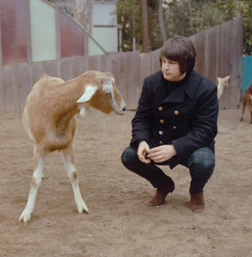 Brian Wilson at the San Diego Zoo. CREDIT: Capitol Photo Archives