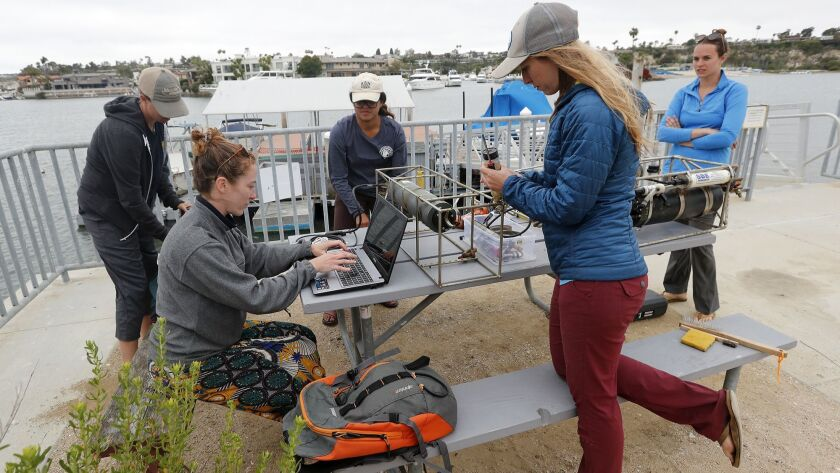 From left to right, Orange County Coastkeeper Marine Restoration director Katie Nichols and UC Davis