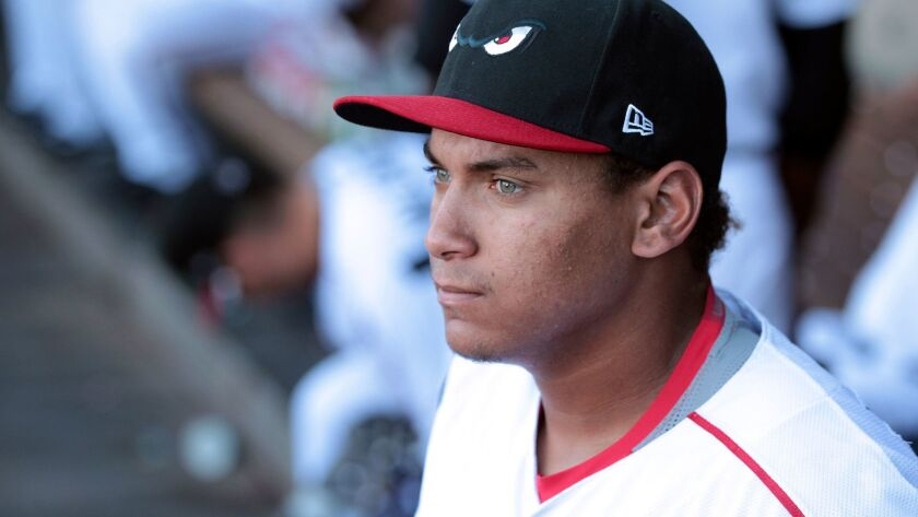 The Storm's Josh Naylor stands in the dugout during the Storm's game against the 66ers at Diamond Stadium in Lake Elsinore on Monday, Aug. 15, 2016.