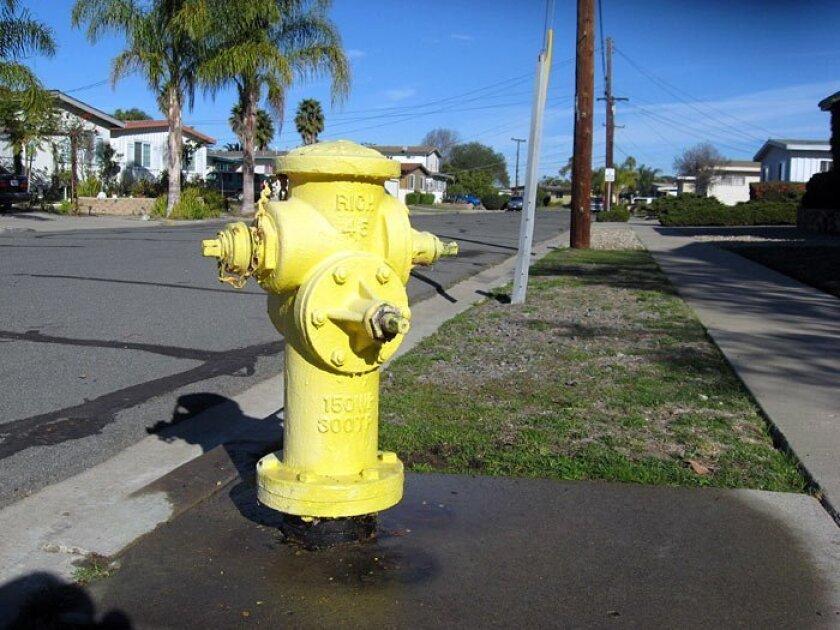 THE SITE: Root Street, Serra Mesa