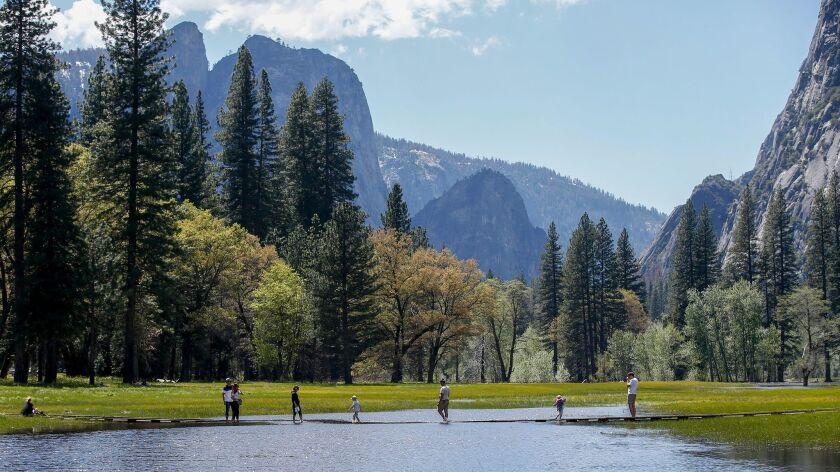YOSEMITE VALLEY, CALIFORNIA, MAY 4, 2017: Visitors to the Yosemite Valley walk through a flooded sec