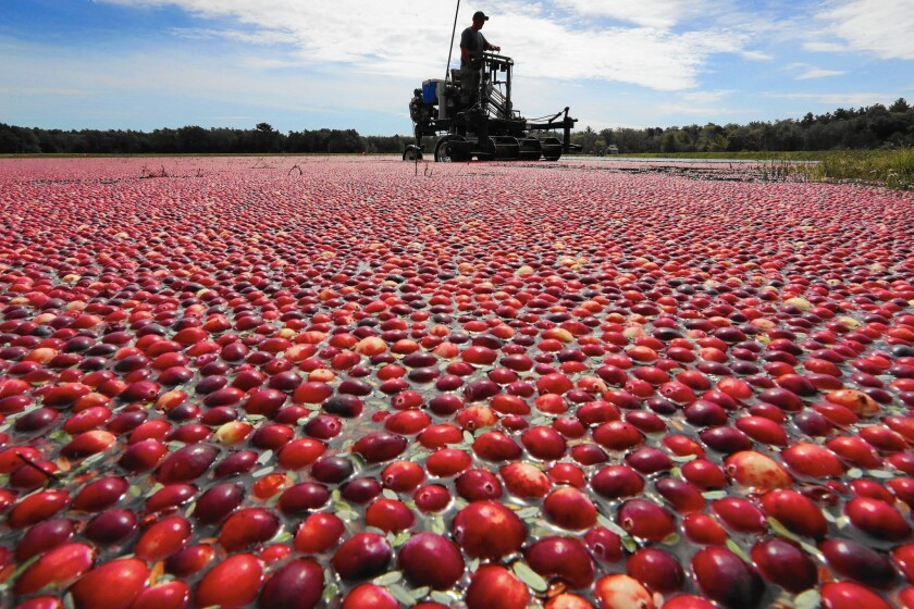 To help fight a proposal to list added sugar on food labels, the cranberry industry over the summer enlisted Wisconsin Gov. Scott Walker and then-Massachusetts Gov. Deval Patrick.