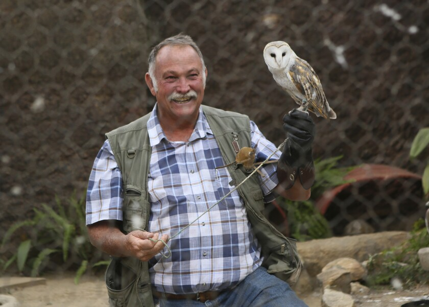 Gary Strafford, a Zimbabwean falconer, holds an owl inside one of the cages at his bird sanctuary, Kuimba Shiri, near Harare, Zimbabwe, Wednesday, June, 17, 2020. Kuimba Shiri, Zimbabwe's only bird park, has survived tumultuous times, including violent land invasions and a devastating economic collapse. Now the outbreak of COVID-19 is proving a stern test. With Zimbabwe's inflation currently at more than 750%, tourism establishments are battling a vicious economic downturn worsened by the new coronavirus travel restrictions. (AP Photo/Tsvangirayi Mukwazhi)