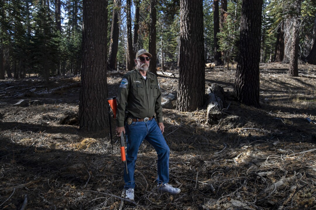 Wildlife specialist Steve Searles stands in a wooded area of Mammoth Lakes.