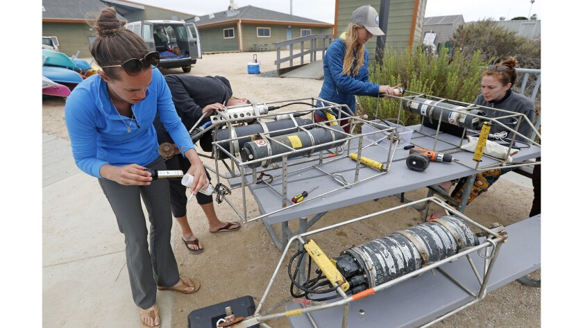 UC Davis marine researchers Melissa Ward, left, Kristen Elsmore, center, and Aurora Ricart, right, check on water sensors they retrieved from Upper Newport Bay on Tuesday. They are studying the effect of eelgrass on ocean acidity.